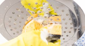 Close-up of shower head being disinfected. Close-up of shower head with foam being disinfected by person with hygienic rubber gloves as chores concept royalty free stock photo