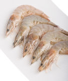 Close up shrimp on bowl Royalty Free Stock Photos