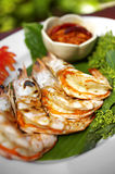 Close up shrimp grilled Royalty Free Stock Photos