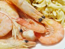 Close up of a shrimp pasta lunch. Stock Photo