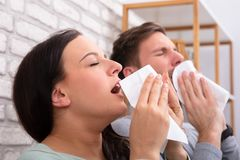 Sick Couple Sneezing In Tissue royalty free stock images