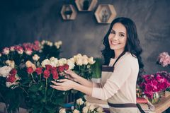 Close up side profile photo beautiful adorable she her lady many roses vases retail seller assistant employee hands arms. Holding check flowers condition stock photography