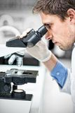 Scientific researcher using microscope in the laboratory. Close up side view of a male scientific researcher using microscope in the laboratory Stock Image