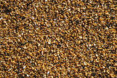 Close-up of silica wet beach. royalty free stock images