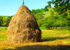 Close-up of a single big haystack near forest stock photography