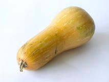 Close-up of a single pumpkin Royalty Free Stock Image