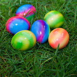Close-Up of Six Colorful Easter Eggs in Grass Royalty Free Stock Photography