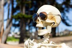 Skeleton`s face with coastal tree background. Close up of skeleton`s face with coastal tree background stock images
