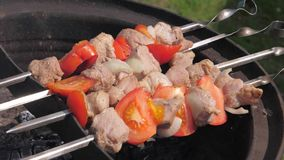 Close-up of skewers of meat and vegetables on skewers and cooked on the grill stock video