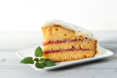 Close up of a slice of cake on the plate with mint leafs Royalty Free Stock Photos