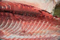 Close up of sliced fresh tuna fish. In fish market Royalty Free Stock Photo
