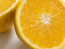 Close-up of sliced juicy orange halves on white background with shadow. Healthy and colorful food royalty free stock image