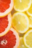 Close-up of sliced lemons and blood orange Royalty Free Stock Photo