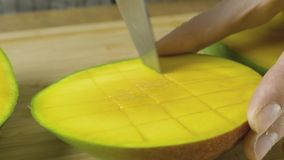 Woman hands cutting yellow mango by pieces slow motion close up video in 4K. Close up slo motion video of Woman hands cutting yellow mango by pieces. Front view royalty free stock image