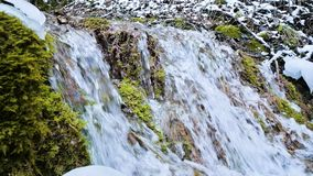 Close-up slow motion cascade stream surrounded by green and petrified moss. High mineral content in mountain water.  stock video