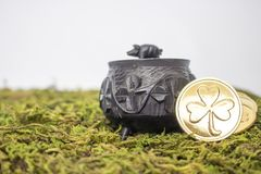 Close Up Small Antique Oak Pot with Shamrocks and Gold Coins on Stock Photo