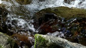 Close-up of small brook. Between stones in mountain stock video