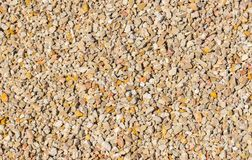 Detail view of many gravel stones stock image