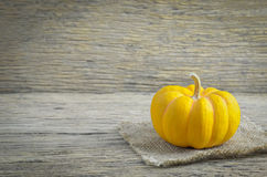Close up of small pumpkin on wooden background Royalty Free Stock Image
