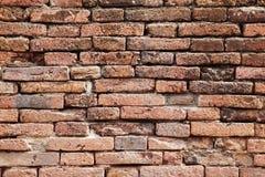 Close up small red brick wall Stock Image