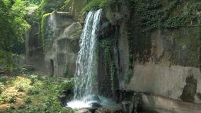 Close-up of a small waterfall in a deep forest on sunny day. Close-up of a small waterfall in a deep forest stock video