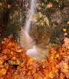 Close-up of small waterfall flowing on autumnal leaves Stock Photos