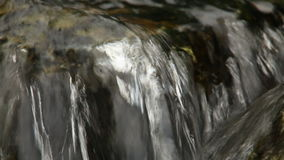 Close up of small waterfall and green plants in nature. Media with audio track. Close up of small waterfall and green plants in nature stock video