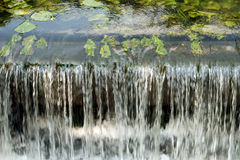Close up of a small weir. With lilypads royalty free stock photos