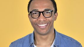 Close Up of Smiling African Man in Glasses, Yellow Background stock video