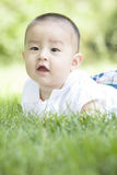 Close-up of a smiling baby. An Asian baby on grass is smiling innocently Stock Photo
