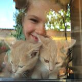 Girl with kittens looking through window