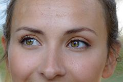Close up the smiling green eyes of a young woman royalty free stock images