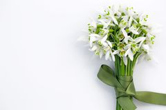 Close-up of a snowdrops bouguet on bright background royalty free stock photography