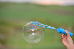 Close up of a soap bubble growing from the blower ring hold by a Royalty Free Stock Image