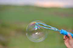 Close up of a soap bubble growing from the blower ring Royalty Free Stock Photography