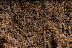 Close up of soil Stock Photography