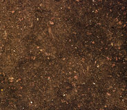 Close up of soil Royalty Free Stock Image