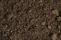 Close-up of a soil Royalty Free Stock Images
