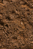 Close up of soil Royalty Free Stock Photography