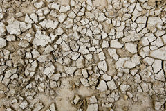 Close up of soil Stock Images