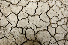 Close up of soil Stock Image