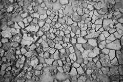 Close up of soil Stock Photo