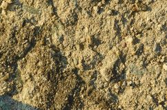 Close up of soil - can be used as background. Soil plain texture background. Stock Image