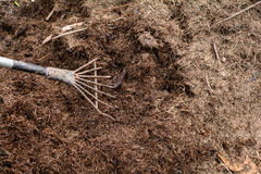 Close up soil fertilizer Organic farming nature. Background stock images