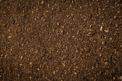 Close up soil peat moss dirty background Stock Photo