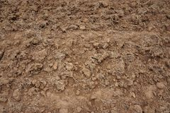 Close up soil preparation stock photo