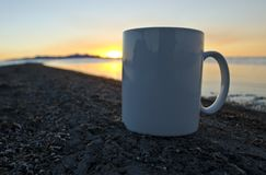 A close up solo blank coffee mug on the bug filled shoreline royalty free stock photo