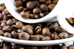 Coffee beans in a cup. A close up of some coffee beans with a white cup Royalty Free Stock Photos