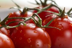Close up of fresh raw cherry tomatoes. Close up of some fresh raw cherry tomatoes on white plate Stock Photos