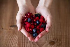 Some hands holding blueberries and raspberries over wooden background. Close-up of some hands holding blueberries and raspberries over wooden background royalty free stock images